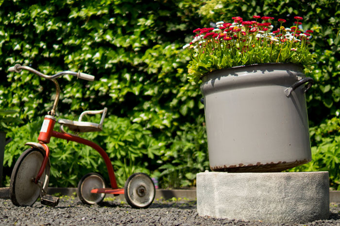 hedge garden flowers red bike