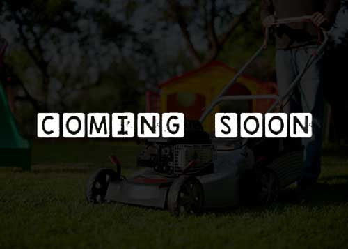 Petrol lawn mower unde construction